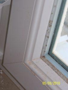 Schimmelbildung am Fenster aufgrund hoher Baufeuchte